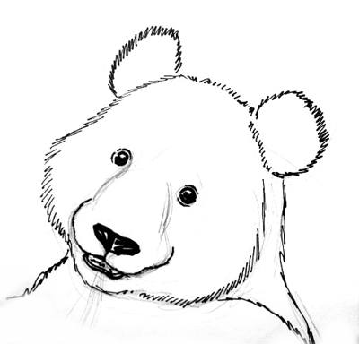 Panda face outline