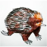 How to draw a realistic echidna animal