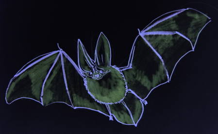 Flying Bat picture
