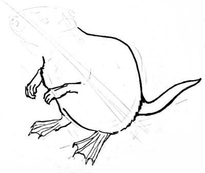 how to draw a beaver step by step easy