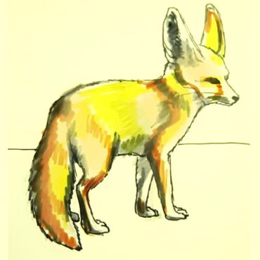 How to draw a Fennec Fox tutorial