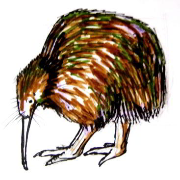 Kiwi colored drawing
