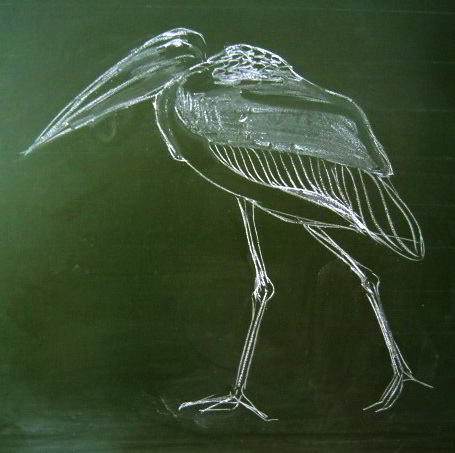 How to draw a Marabou with chalk