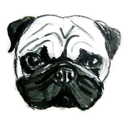 How to draw pug head and face tutorial