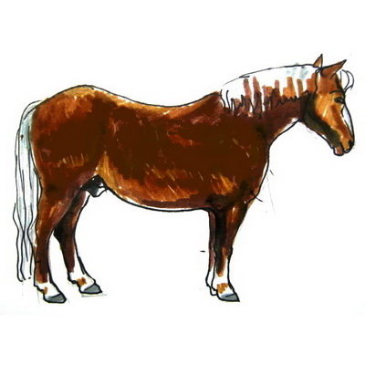 Horse colored drawing