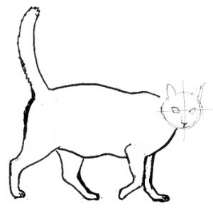 How to draw a walking cat lesson