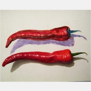 Chili Pepper colored drwing