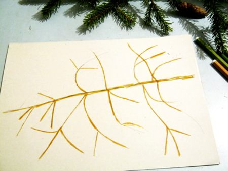 How to draw a spruce